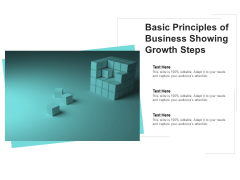 Basic Principles Of Business Showing Growth Steps Ppt PowerPoint Presentation Gallery Example