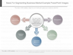 Basis For Segmenting Business Market Example Powerpoint Images