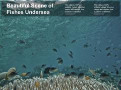 Beautiful Scene Of Fishes Undersea Ppt PowerPoint Presentation Portfolio Objects