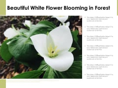 Beautiful White Flower Blooming In Forest Ppt PowerPoint Presentation Icon Infographics PDF