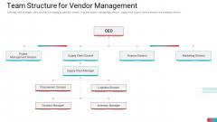 Benchmarking Vendor Operation Control Procedure Team Structure For Vendor Management Portrait PDF