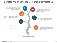 Benefits And Importance Of Market Segmentation Ppt PowerPoint Presentation Outline Template