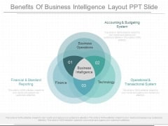 Benefits Of Business Intelligence Layout Ppt Slide