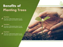 Benefits Of Planting Trees Ppt PowerPoint Presentation Styles Mockup