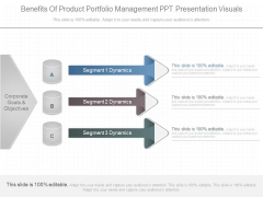 Benefits Of Product Portfolio Management Ppt Presentation Visuals