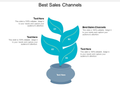 Best Sales Channels Ppt PowerPoint Presentation Summary Good Cpb