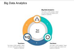 Big Data Analytics Ppt PowerPoint Presentation Infographic Template Smartart Cpb
