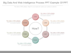 Big Data And Web Intelligence Process Ppt Example Of Ppt