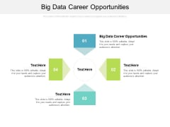 Big Data Career Opportunities Ppt PowerPoint Presentation Portfolio Format Ideas Cpb