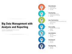 Big Data Management With Analysis And Reporting Ppt PowerPoint Presentation File Example Topics PDF