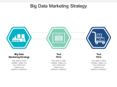 Big Data Marketing Strategy Ppt PowerPoint Presentation Slides Styles Cpb