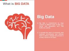 Big Data Ppt PowerPoint Presentation Portfolio Designs