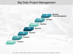 Big Data Project Management Ppt Powerpoint Presentation Portfolio Elements Cpb