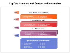 Big Data Structure With Content And Information Ppt PowerPoint Presentation Gallery Inspiration PDF