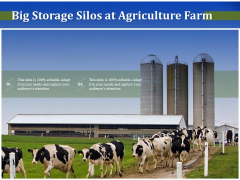 Big Storage Silos At Agriculture Farm Ppt PowerPoint Presentation File Icons PDF