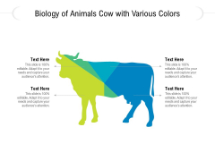 Biology Of Animals Cow With Various Colors Ppt PowerPoint Presentation Gallery Visual Aids PDF
