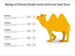 Biology Of Animals Double Hump Camel And Sand Dune Ppt PowerPoint Presentation File Display PDF