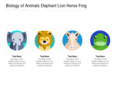Biology Of Animals Elephant Lion Horse Frog Ppt PowerPoint Presentation Gallery Inspiration PDF