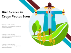 Bird Scarer In Crops Vector Icon Ppt PowerPoint Presentation Outline Slides PDF