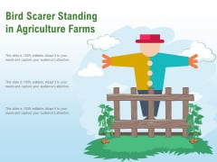 Bird Scarer Standing In Agriculture Farms Ppt PowerPoint Presentation Show Backgrounds PDF
