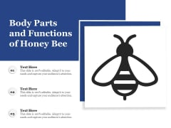 Body Parts And Functions Of Honey Bee Ppt PowerPoint Presentation Gallery Images PDF