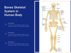 Bones Skeletal System In Human Body Ppt PowerPoint Presentation File Slides PDF
