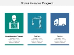 Bonus Incentive Program Ppt PowerPoint Presentation File Graphics Cpb