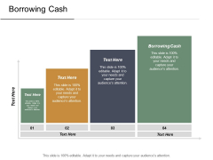 Borrowing Cash Ppt Powerpoint Presentation Inspiration Master Slide Cpb