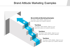 Brand Attitude Marketing Examples Ppt PowerPoint Presentation Model Infographics Cpb