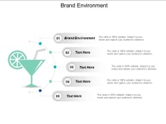 Brand Environment Ppt PowerPoint Presentation Outline Portfolio Cpb
