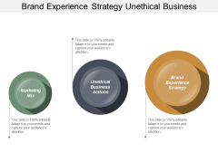 Brand Experience Strategy Unethical Business Actions Marketing Mix Ppt PowerPoint Presentation Professional Slide
