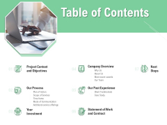 Brand Identification Designing Proposal Table Of Contents Professional PDF