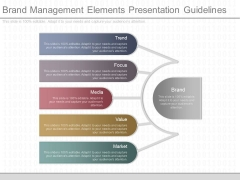 Brand Management Elements Presentation Guidelines