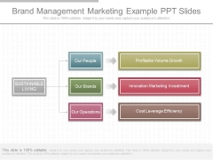 Brand Management Marketing Example Ppt Slides