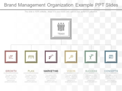 Brand Management Organization Example Ppt Slides
