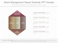 Brand Management Report Example Ppt Sample