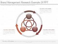 Brand Management Research Example Of Ppt
