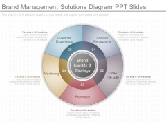Brand Management Solutions Diagram Ppt Slides