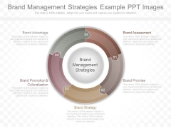 Brand Management Strategies Example Ppt Images