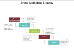Brand Marketing Strategy Ppt Powerpoint Presentation Show Example Introduction Cpb
