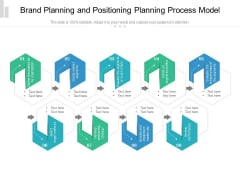 Brand Planning And Positioning Planning Process Model Ppt PowerPoint Presentation Gallery Templates PDF
