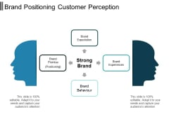 Brand Positioning Customer Perception Ppt PowerPoint Presentation Professional Background Designs