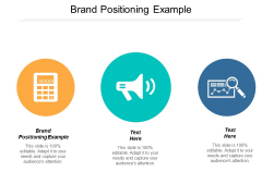 Brand Positioning Example Ppt PowerPoint Presentation Background Image