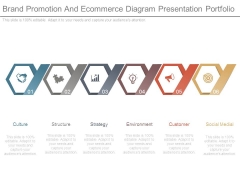 Brand Promotion And Ecommerce Diagram Presentation Portfolio