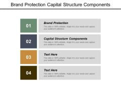 Brand Protection Capital Structure Components Ppt PowerPoint Presentation Infographic Template Visual Aids