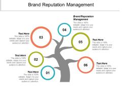 Brand Reputation Management Ppt PowerPoint Presentation Professional Gridlines Cpb