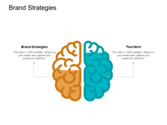 Brand Strategies Ppt PowerPoint Presentation Slides Guidelines Cpb