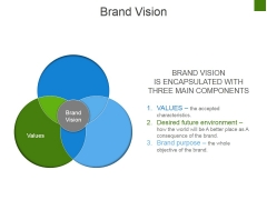 Brand Vision Ppt PowerPoint Presentation Ideas Demonstration