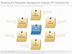 Branding And Reputation Management Example Ppt Example File