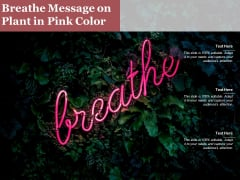 Breathe Message On Plant In Pink Color Ppt PowerPoint Presentation Styles Influencers PDF